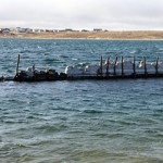 Cambridge Bay fights to keep shipwreck