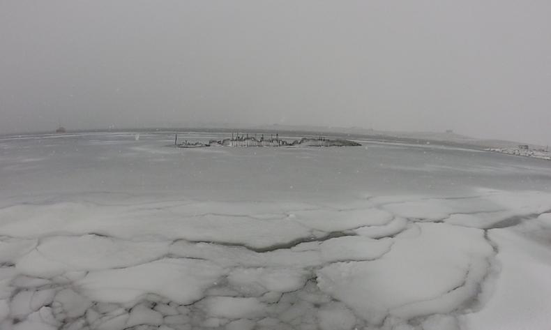 snowing-maud790
