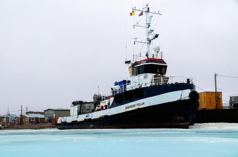 tandberg polar